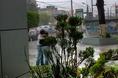 lluvia (7 of 15)