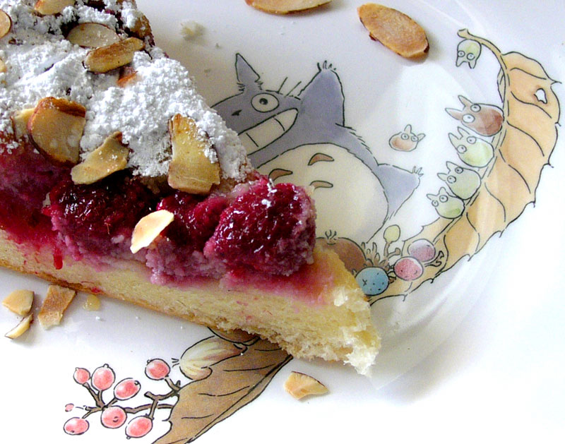 raspberry almond tart, up close and totoro'd.