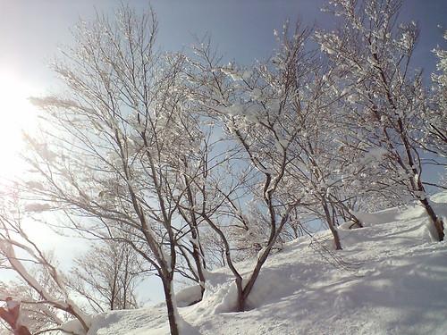 Ski Photo 05