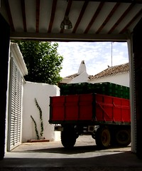 Chardonnay arriving