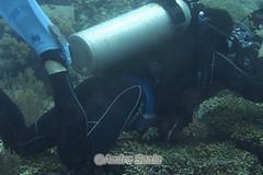 O que você NAO deve fazer num coral