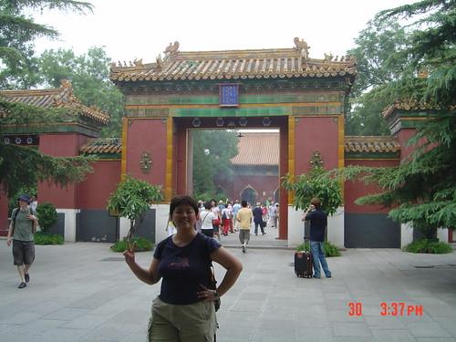 China (271)