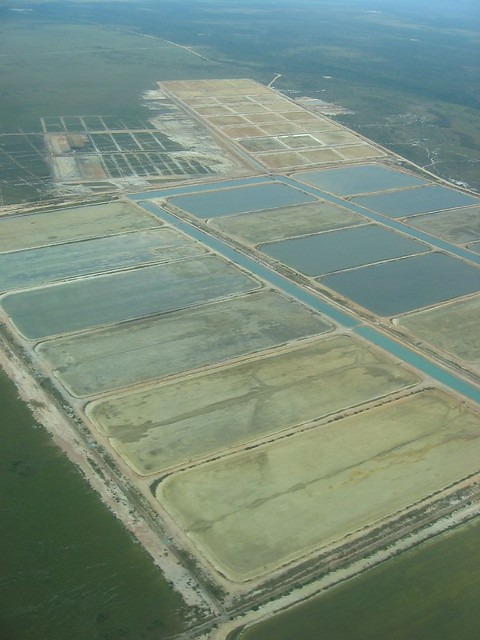 Shrimp Farming | Flickr - Photo Sharing!