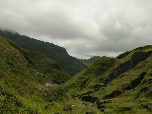 pinatubo summit greenscape
