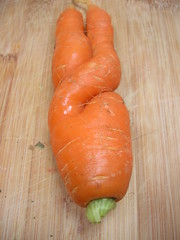 carrot in garuda