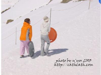 cathcath jungfraujoch131