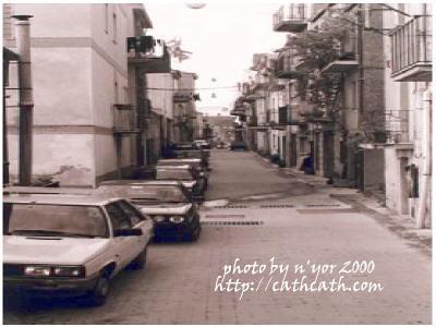 cathcath normal_Sperlinga2000Street1