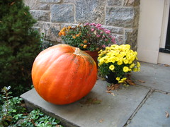 fall pics 003