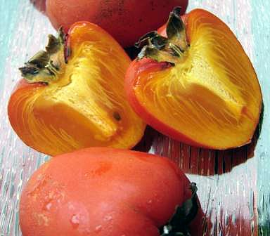 persimmon guts