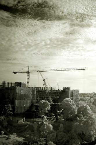 crane again