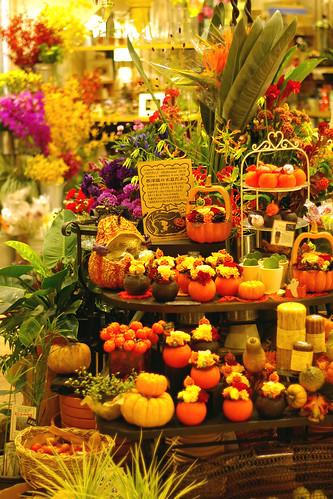 HANAKEI Halloween 2005