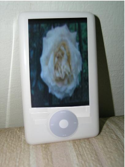 iPod WMD