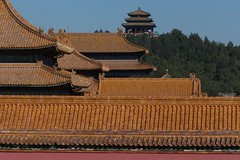 Roofs of Forbidden City