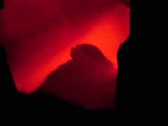 gig shadow
