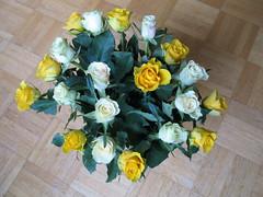 Rosenstrauß