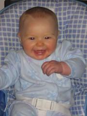 Leda at 6 months!