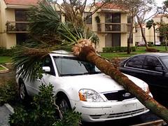 Hurricane Wilma 3