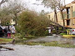 Hurricane Wilma 6