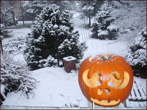 Pumpkin-Snow