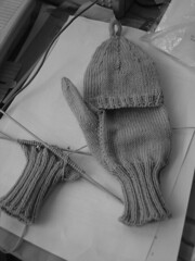 mitten progress
