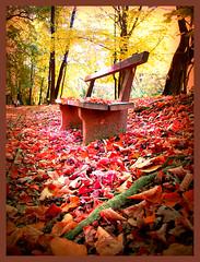 take a seat photo by CCCvrcak