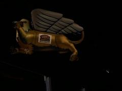 Griffins' Mascot