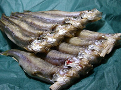 柳葉魚だぜ