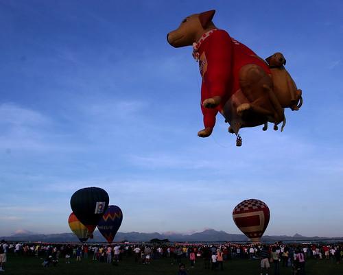 10th Balloon Fiesta (Feb. 12, 2006) - 45