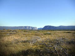 Western Brook Pond from afar