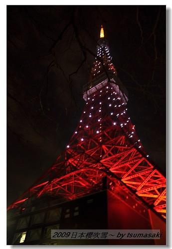 20090328 東京鐵塔