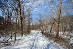 Snowy path photo by thefuton