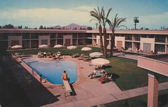 Desert Rose Motor Hotel - Phoenix, Arizona photo by The Cardboard America Archives