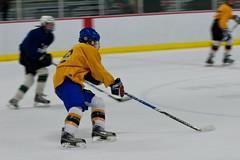 Nighthawks Hockey