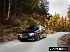 2009 Audi S3 Sportback photo by Wolfgang Lienbacher