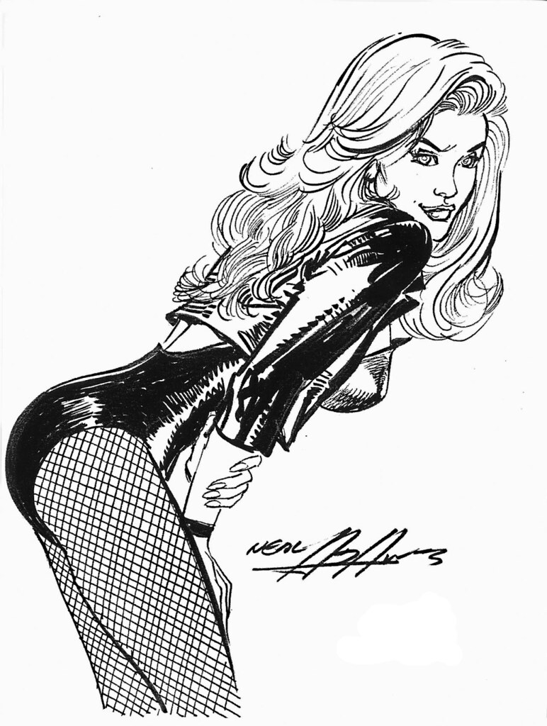 Black Canary Neal Adams Sketchbook 2007