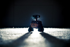 WALL•E photo by Zak Milofsky