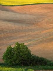 Resting Fields ~ Slovakia photo by Martin Sojka .. www.VisualEscap.es