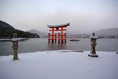 Snowy Miyajima Torii [Worldheritage] photo by h orihashi