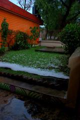 lluvia (13 of 15)