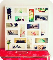My MOOs Framed photo by Teka e Fabi®
