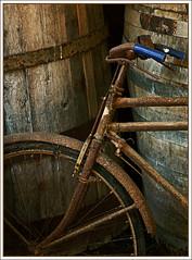 Winery Bicycle (Explored May 31/09) photo by magic_fella