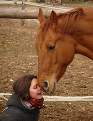 Friendship (047) photo by horsemanship