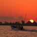 Isla Holbox 07 BECK PHOTO0056