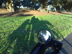 trike silhouette