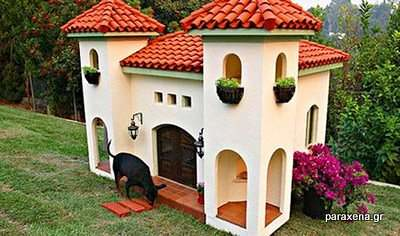 dog-house-pictures-02