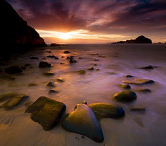 Big Sur - Pfieffer Beach photo by kevin mcneal