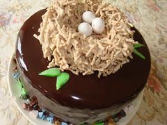 Bird's Nest Cake photo by balkin designs
