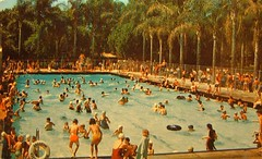 Vintage Post Card: Anaheim City Park Plunge photo by cwalsh415