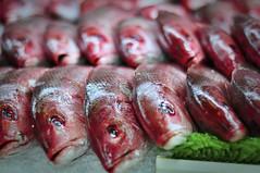 Fisch at Boston Haymarket photo by Werner Kunz