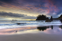Grandmother of the Ages #1 - Trinidad, Humboldt County, California photo by PatrickSmithPhotography